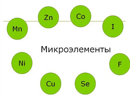 микроэлементы1
