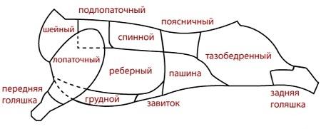 Мясной отруб1